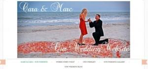 Wedding Website by La dolce vITa